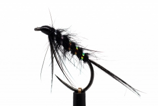 Black diawl bach